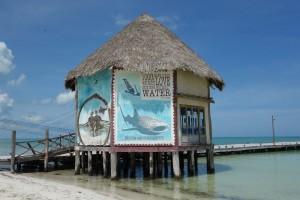 Karibisches Flair auf der Isla Holbox (sprich: Holbosch)