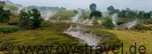 Neuseeland, Vulkanland: überall tritt aus sog. Fumarolen Wasserdampf und Gas aus. Teilweise riecht es vom Schwefel nach verfaulten Eiern - aber man gewöhnt sich daran