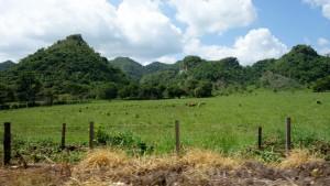 Flores, Palenque, San Cristobal: Grüne Landschaften im Westen Guatemalas