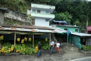 Fahrt vom Cotopaxi Nationalpark nach Puerto Lopez
