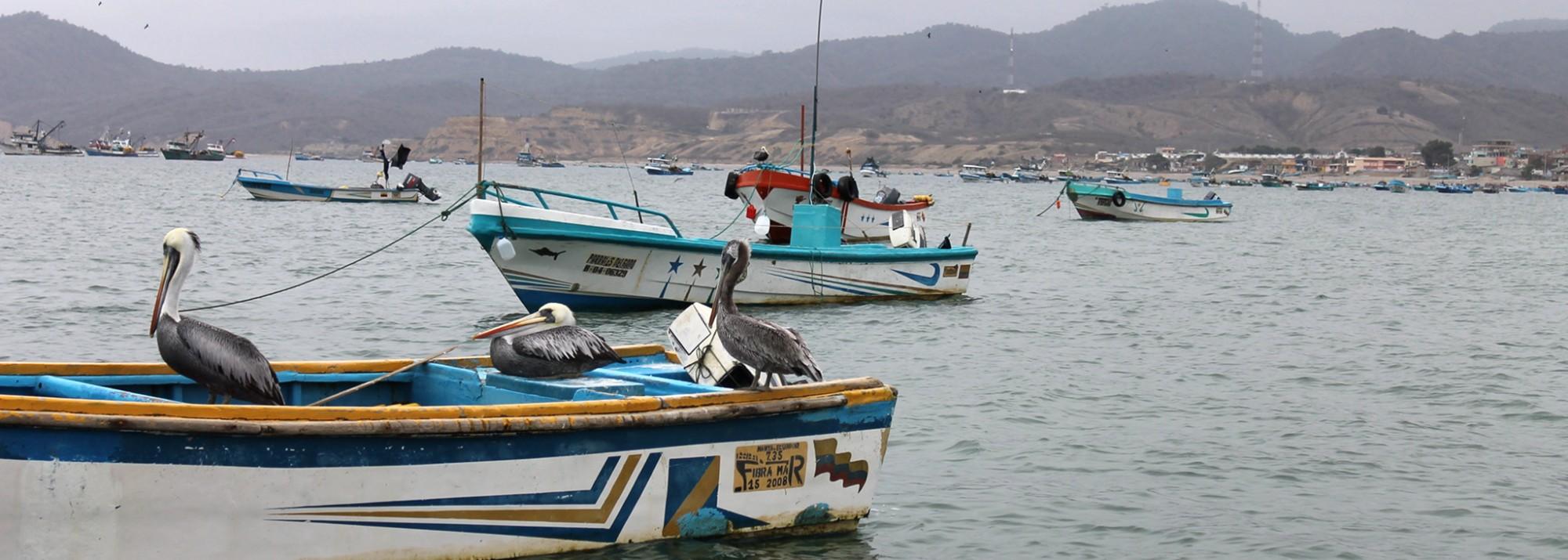 Ecuador Puerto Lopez und Los Frailes