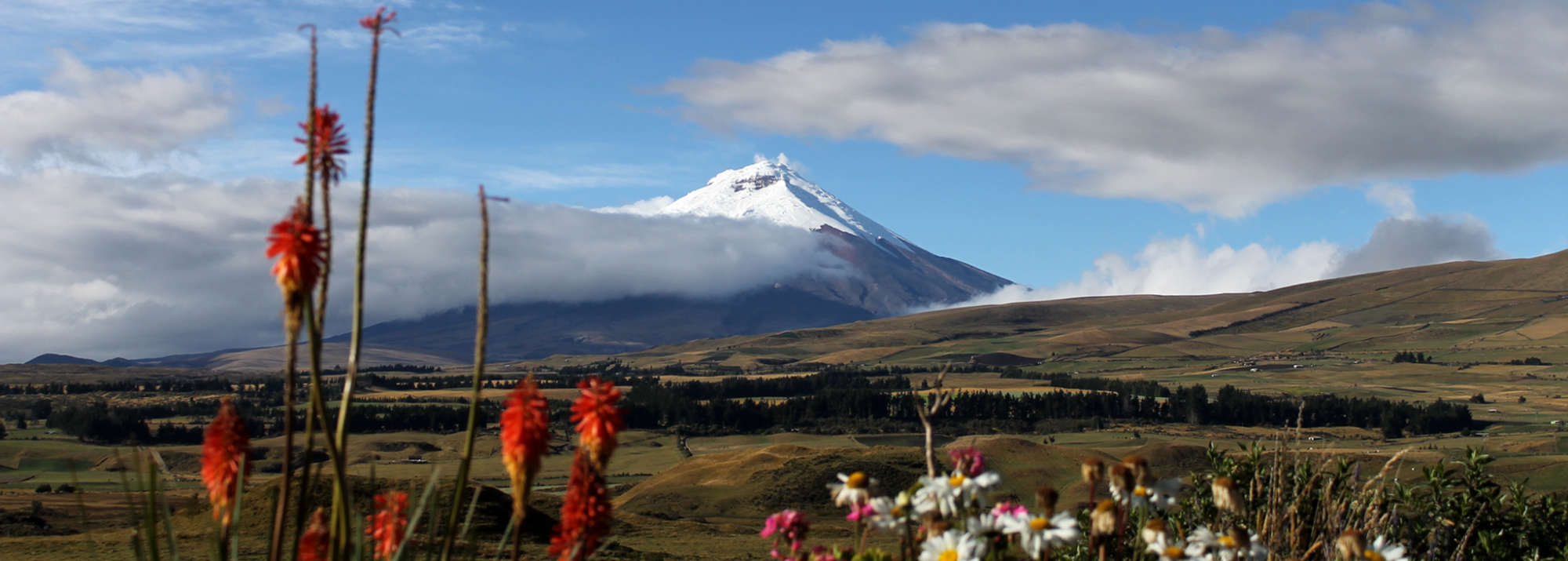 Ecuador: Blick auf den Vulkan Cotopaxi und den gleichnamigen Nationalpark
