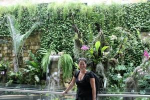 Guayaquil: Regenwald in der Gepäckausgabe des Flughafens