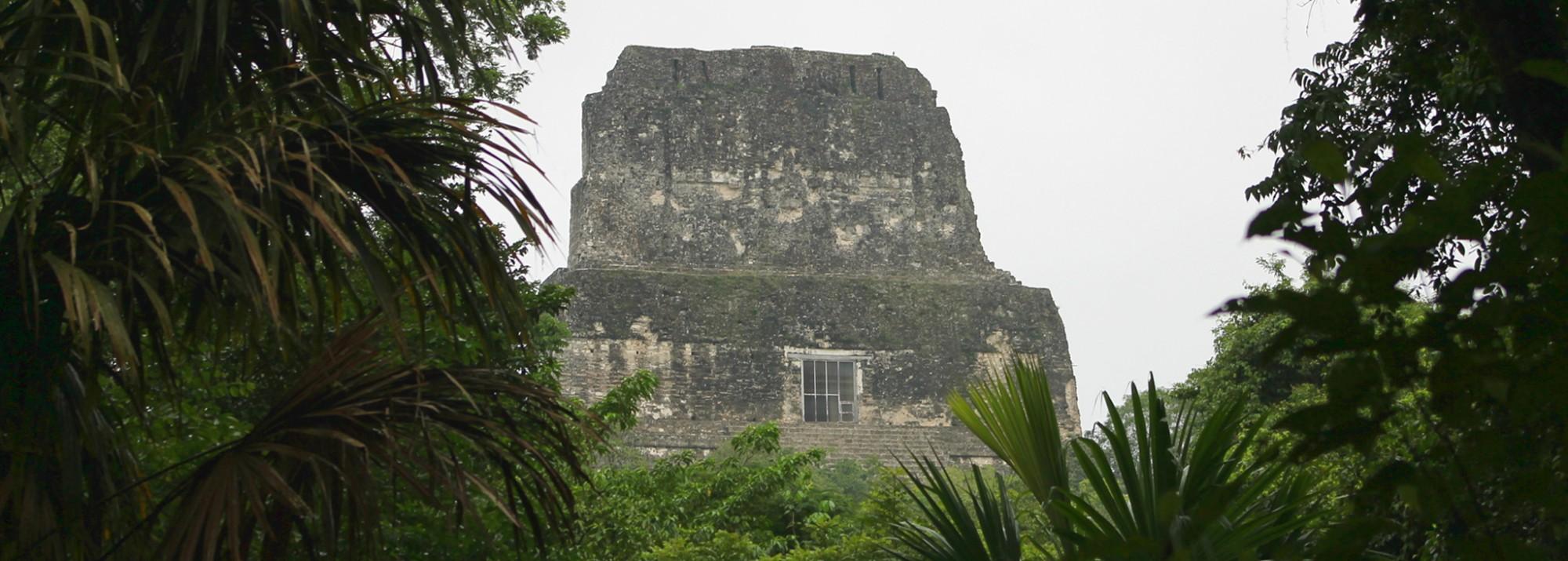 Guatemala: Tempel 4 der Maya-Stadt Tikal im Dschungel Guatemalas