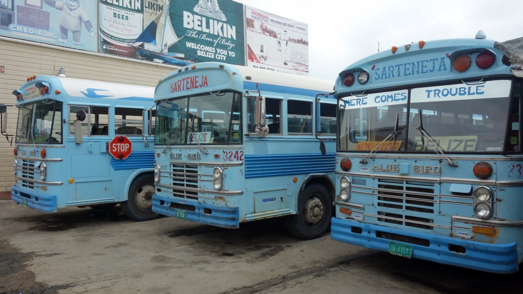 Belize: Chicken-Busses nach Belize City